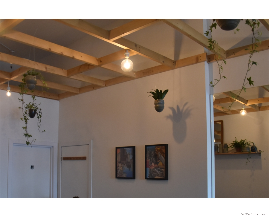 Lights and plants hang from the ceiling, while pictures hang on the walls.