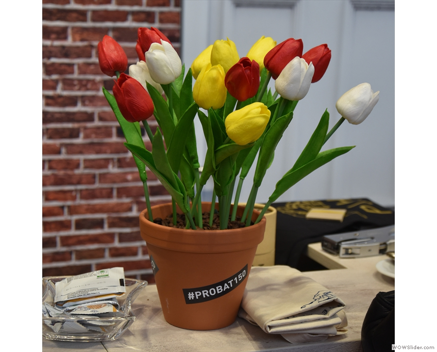 We can't leave Amsterdam without some tulips though.