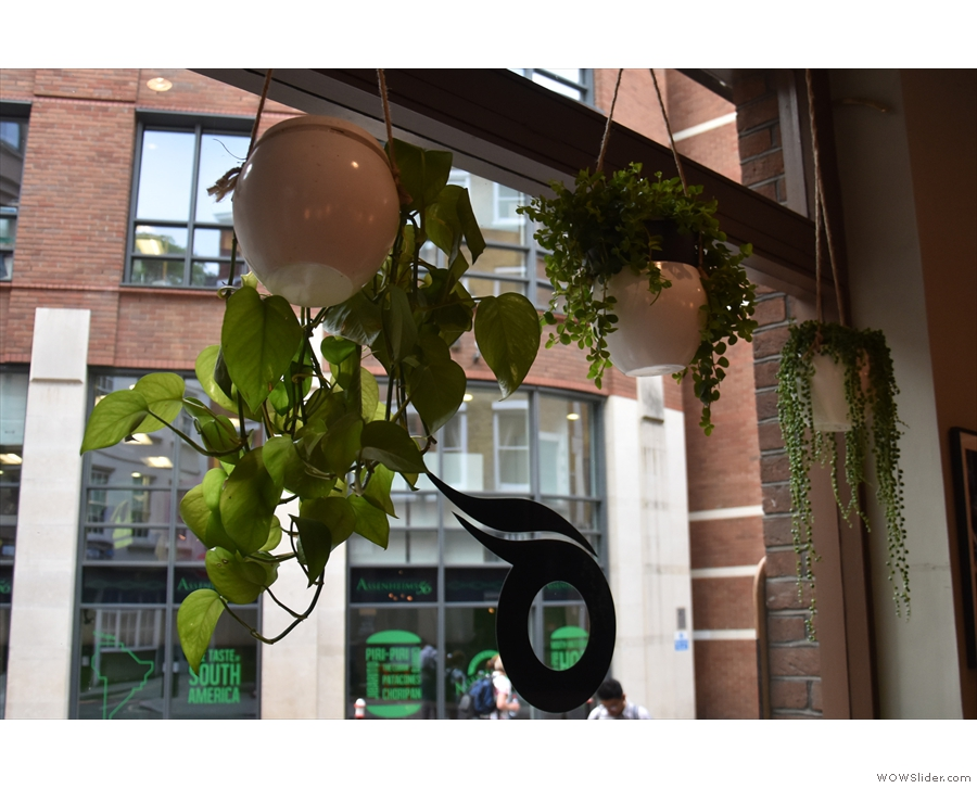 There are lots of other neat features, including the greenery in the windows...