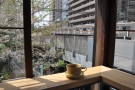 My coffee, on the window bar in 2017, admiring the views...