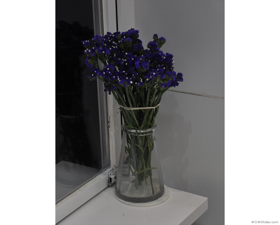 It's not all white. These flowers by the window add a splash of blue...