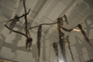 ... an installation made from dead tree branches hanging from the ceiling.