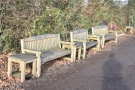 ... starting with these three benches opposite the shack.