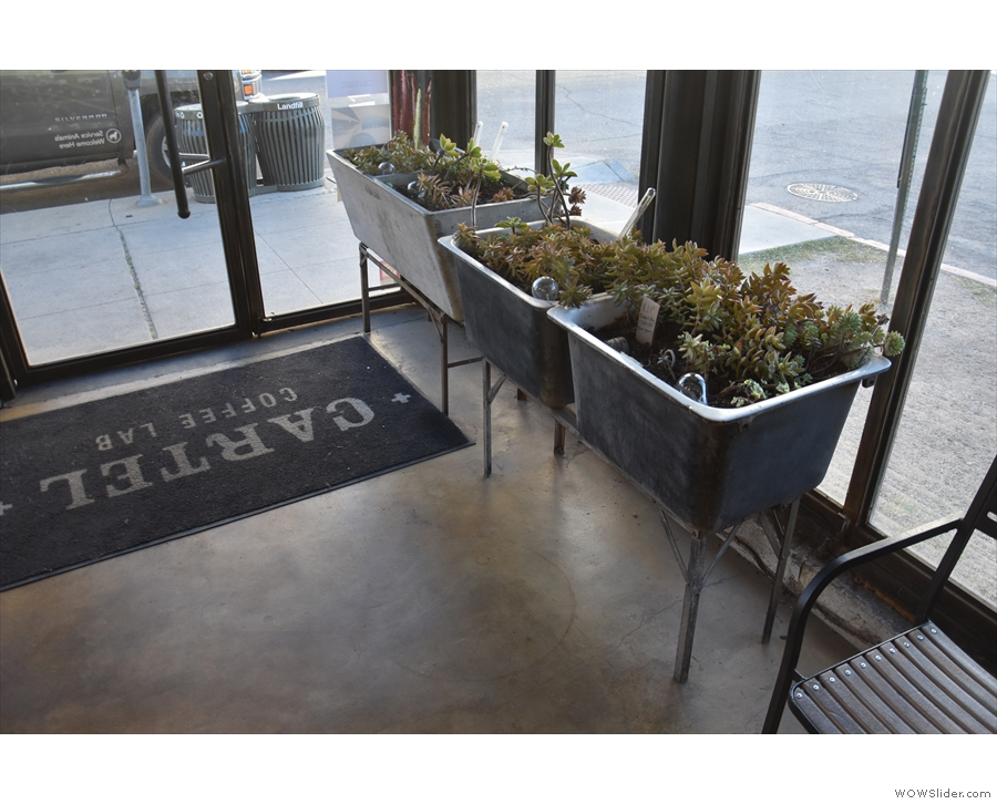 Cartel is full of neat touches, including these planters in the windows next to the door.