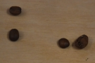 ... which turned out to be a Maragogype varietal, known for its huge beans (on the right).