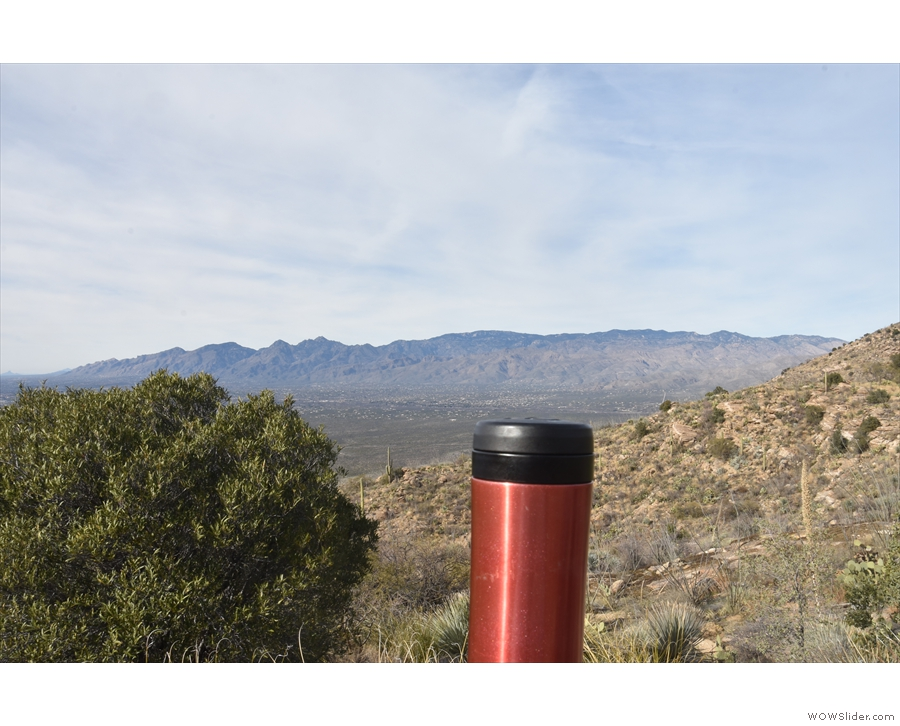 Of course, my coffee came too, enjoying the same view across to Mount Lemmon...