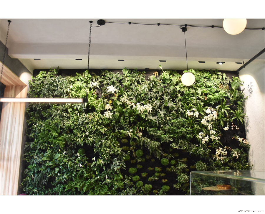 ... but not as much as the living wall at the far, left-hand end.