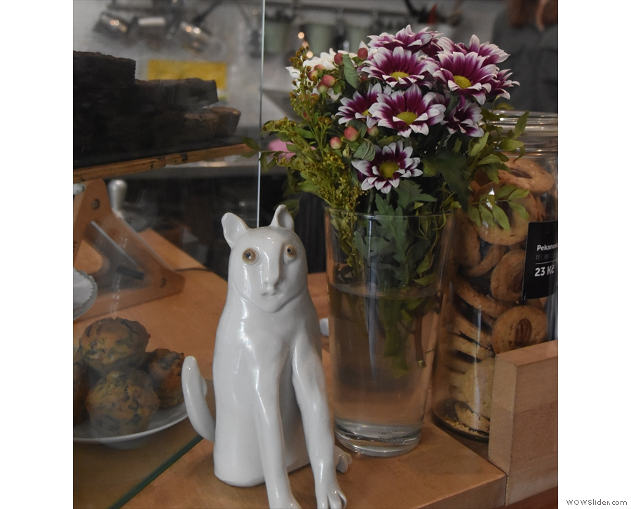 ... and the cat, along with the vase of flowers, on the counter.
