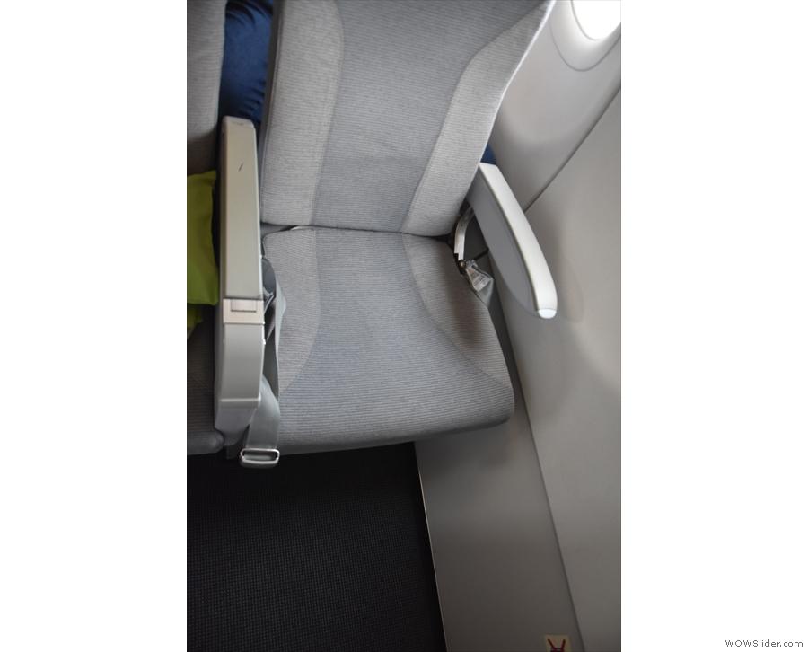 The seat itself.