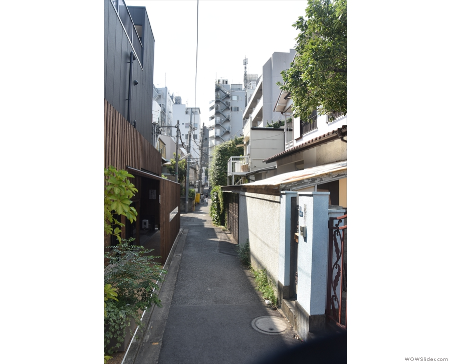 A narrow lane in Aoyama, Tokyo. I'll be honest: it's not looking promising.
