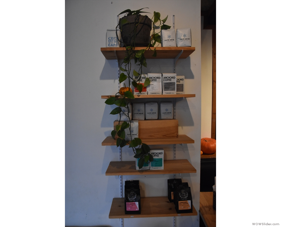 And finally, there's a set of retail shelves opposite the door, with more greenery.