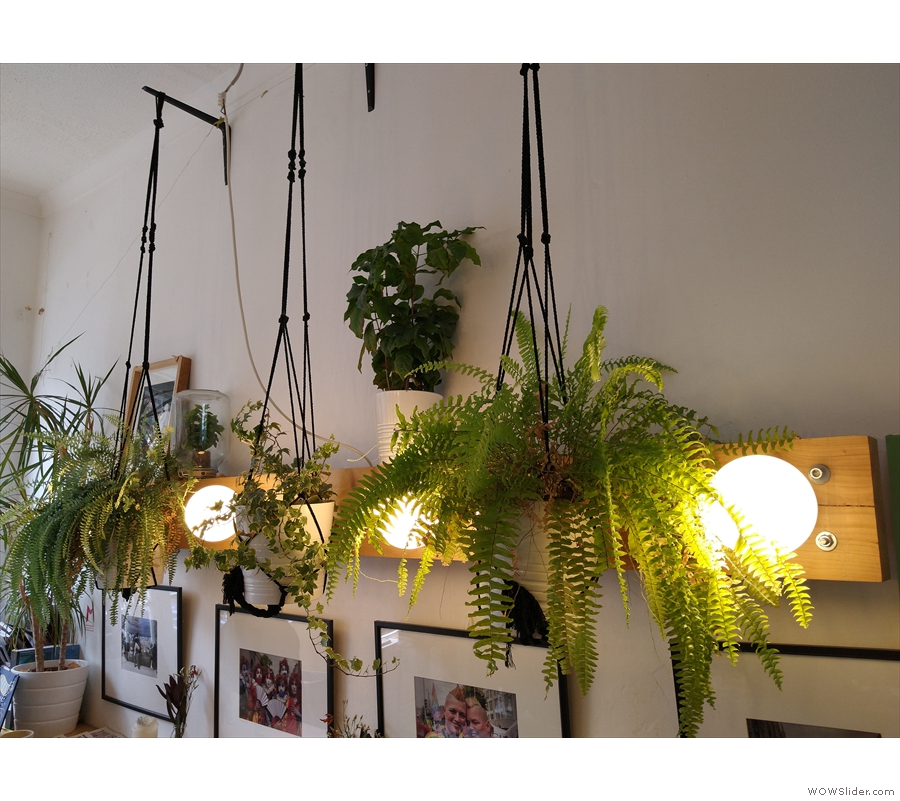 Although small, it's a busy space, with plants hanging from the ceilings and pictures...