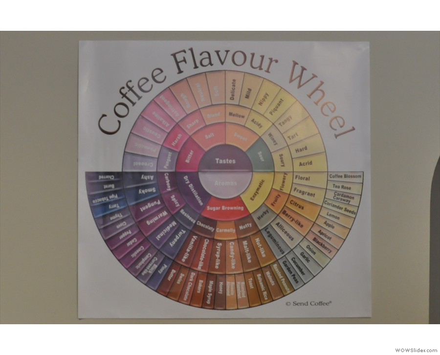 The tasting wheel behind her gives a clue to the coffee obsession!
