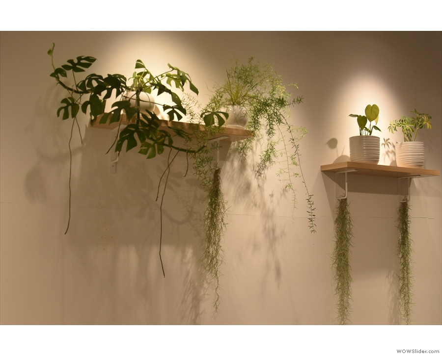 There are also lots of plants, which offset the predominantly white decor.