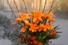 Nice flowers.