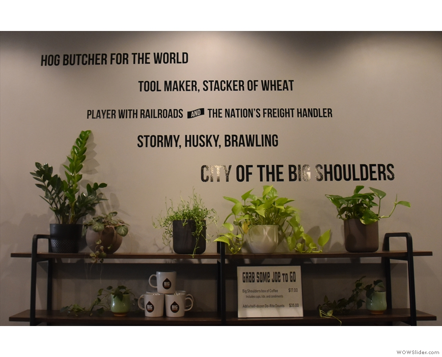 Big Shoulders is a very green space. These plants are under the slogan on the wall...