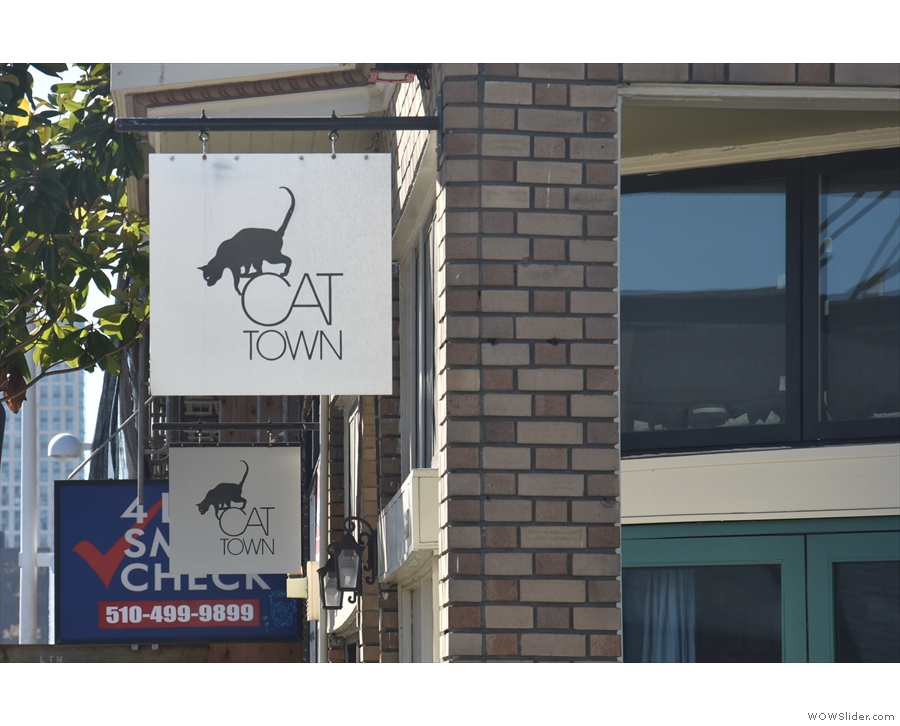 It's home to Cat Town, the first cat cafe in the USA!