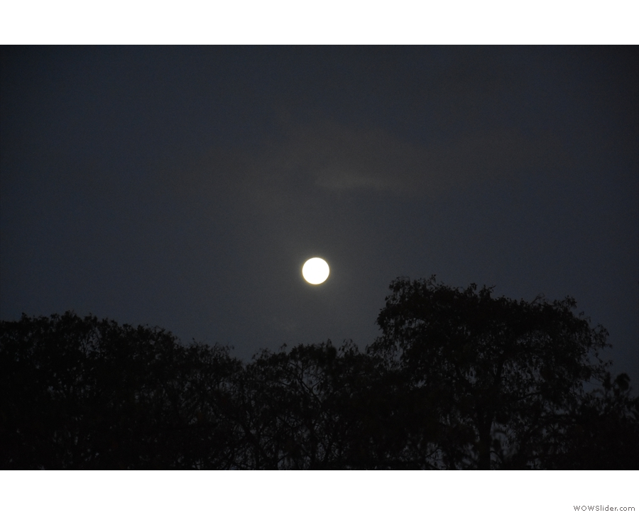 I was up far too early on Saturday morning, although I had the moon for company...