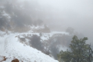I returned the following day to hike the Kaibab trail. But where have the views gone?