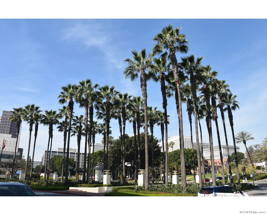 ... before making my way to Los Angeles Union Station, fronted by these palm trees.