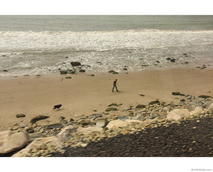 A lone walker and accompanying dog take the air on the beach.