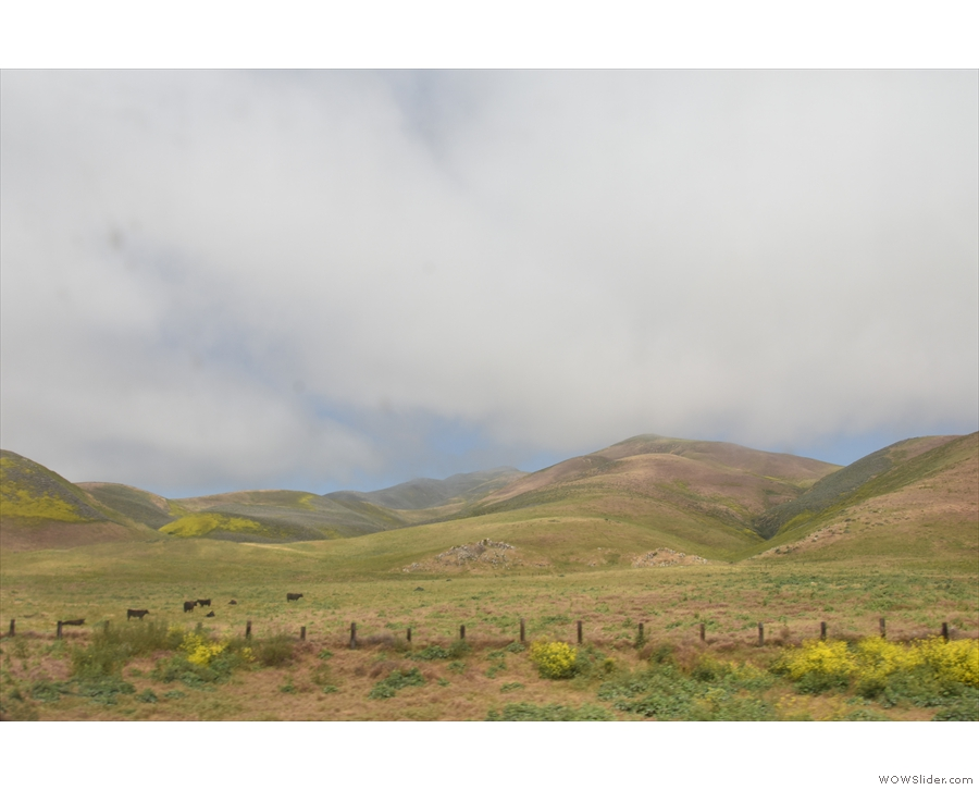 ... where green, rolling hills are backed by clouds and glimpses of blue sky beyond.