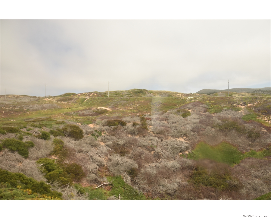 Like the coastline, the rugged hills hold a particular fascination for me.