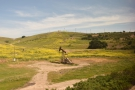 ... passing 'nodding donkey' style oil wells...