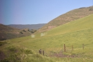 Less than 10 minutes after leaving San Luis Obispo, we're already climbing into the hills.
