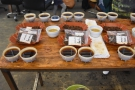 I also attended a cupping at the Chromatic Coffee roastery...