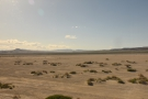 The scrubland has now given way to the 40 Mile Desert...