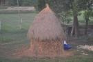 Nice haystack.
