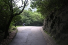 The best part, though, are the two roads which combine to circle Victoria Peak...