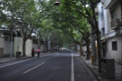 The tree-lined streets of the French Concession where I spent one of my last two days...