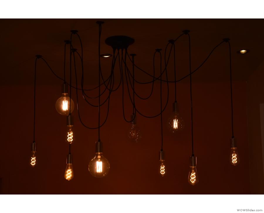 Some many bulbs!