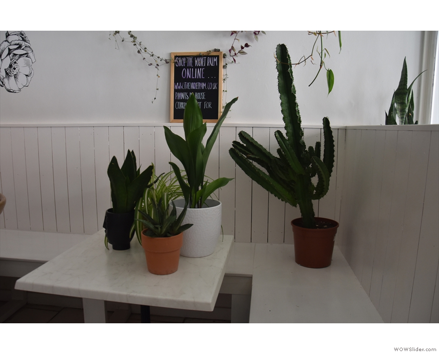 I thought the use of plants (in particular, cacti) to denote out of use tables was very clever!