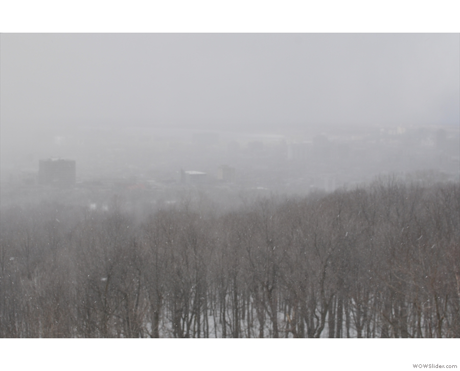 I had not picked the best day to return to Mt Royal, but it was the only day I had left.