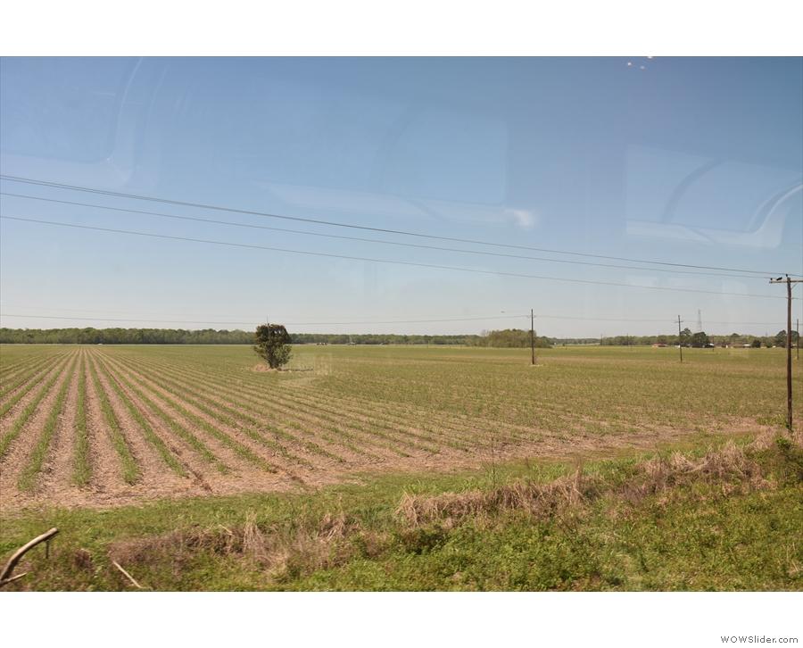 ... and more farmland.