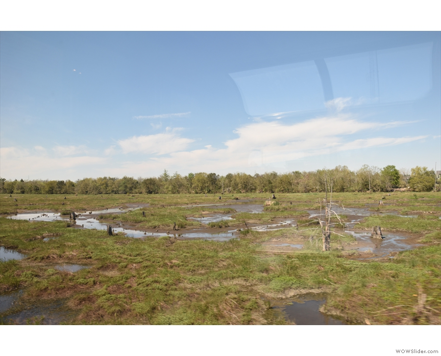 ... more wetland too...