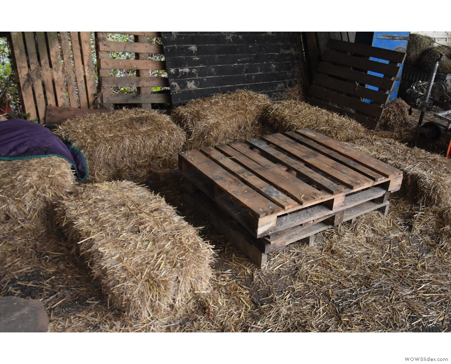 ... and a pallet with more straw bales for seats.