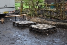 ... and more pallets, with bales and a wooden bench for seating.