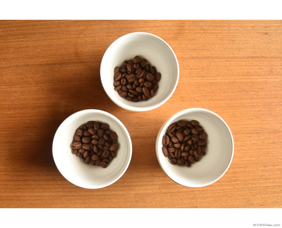The coffees, weighed out in their bowls. Visually, there is little difference between them.