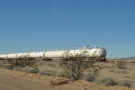 One of the bizarre stands of tanker-wagons that I occasional passed.