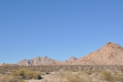 I'm now driving along the north edge of Joshua Tree, seen here to the left of the road...