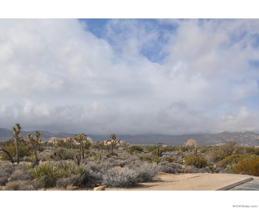 The parking lot in the Joshua Tree National Park, looking south towards Ryan Mountain.