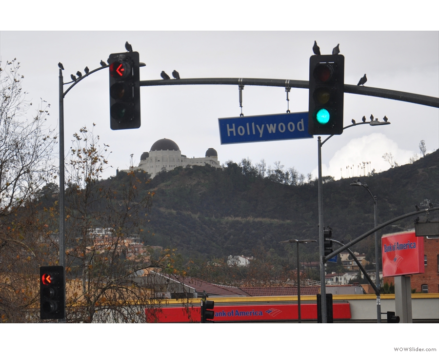 ... which is on Hollywood Boulevard.