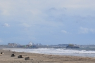 ... you can see Santa Monica Pier, with planes taking off from LAX in the background.