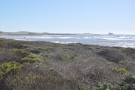 This is looking towards Point Piedras Blancas and the lighthouse...