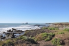 My final stop, just south of Piedras Blancas Lighthouse...
