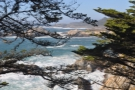 ... where I'd really come to look at the ocean. This is the view north towards Point Lobos...